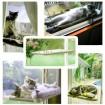 Ablakra rögzíthető macskaágy-4